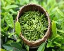 崂山绿茶(月)